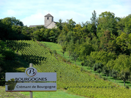 © SUCHAUT C Landscape in the wine growing region of the Chatillonnais