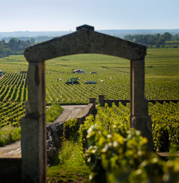 © BIVB / IBANEZ A.The Burgundy region opens its doors to you