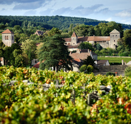 © BIVB / JOLY M. Landscape in the wine growing region of the Côte de Nuits.