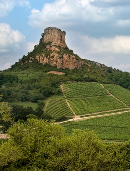© BIVB / ARM.COM Landscape in the wine growing region of the Mâconnais